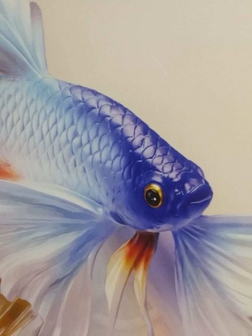 Chú cá cảnh trông thật sinh động, cảm giác như bạn sắp cầm trên tay vậy - chính công nghệ in phun UV hiện đại cho hiệu ứng hình ảnh, sự chuyển màu vô cũng tự nhiên - máy in UV phẳng khổ lớn